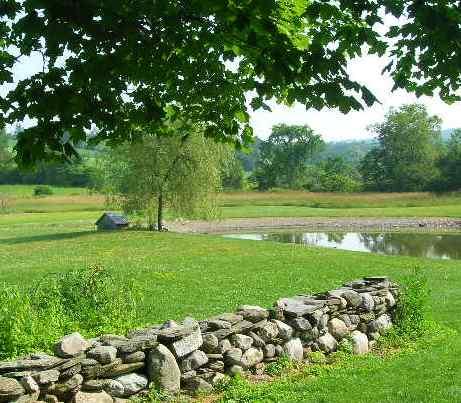 American Masala Farm